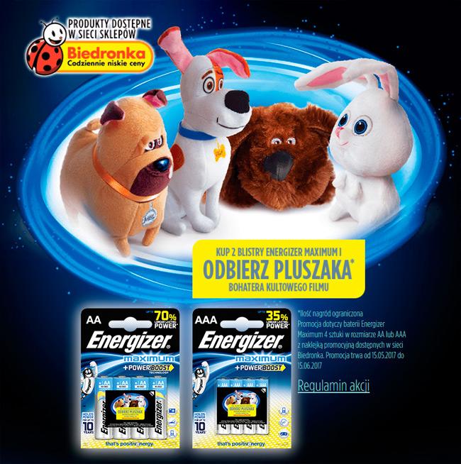 Maskotka gratis przy zakupie baterii Energizer